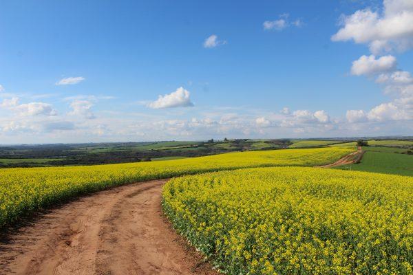 Is een huisje op het platteland de oplossing voor jou?