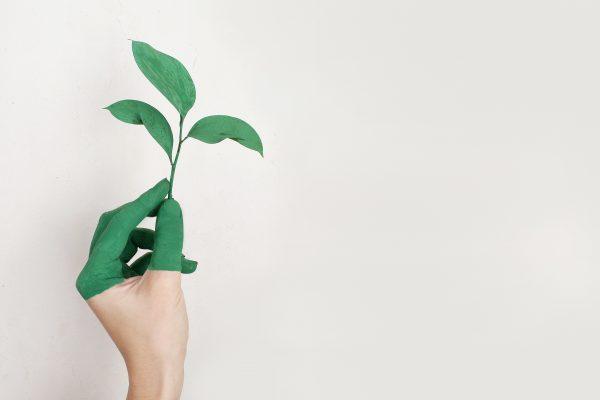 Zo leef je milieubewust. 4 praktische tips voor een bewust(er) leven